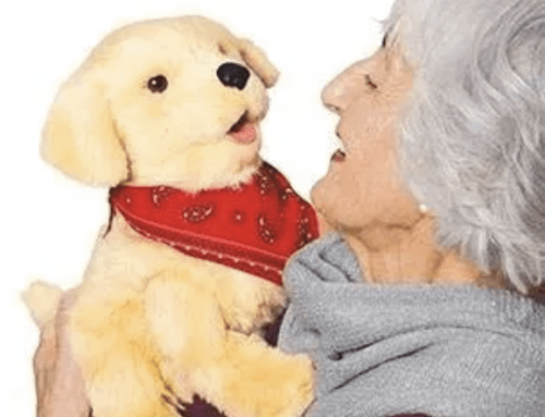 20 of the Best Gifts for Seniors