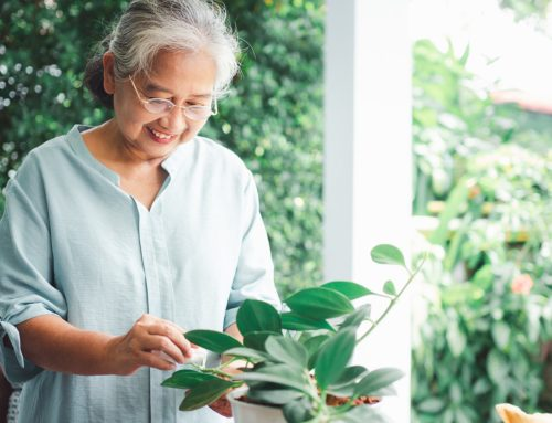 Finding Purpose and Happiness in Life: 7 Suggestions for Older Adults to Follow
